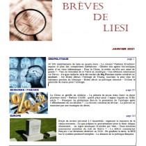 BREVES DE LIESI - JANVIER 2021